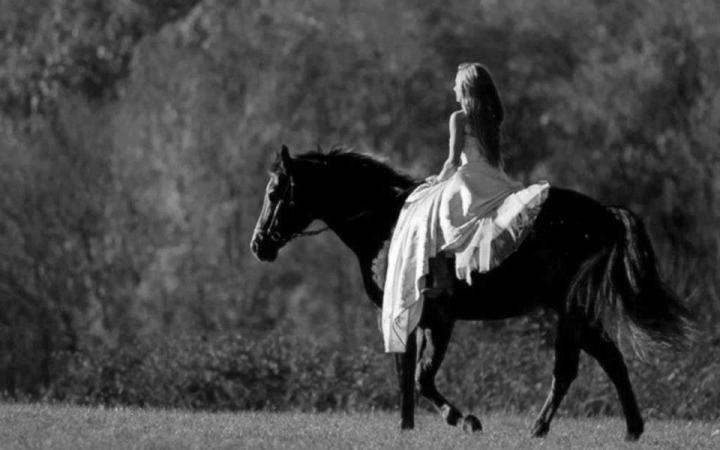 coaching-caballos-2